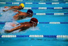 Photo of مقاله ورزشی