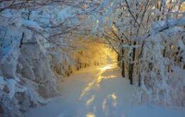 انشا درمورد زمستان به زبان ادبی