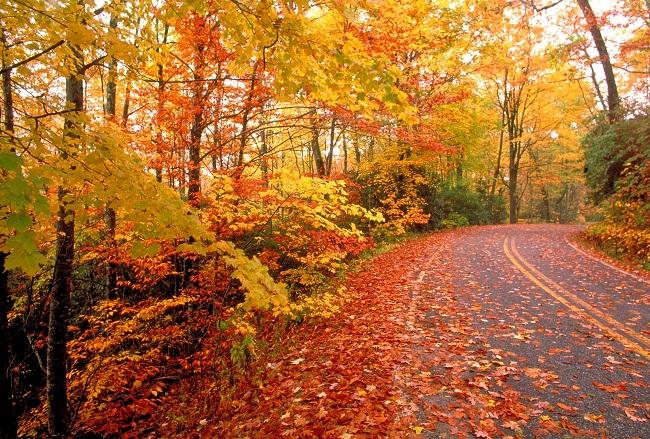 انشا درمورد فصل پاییز