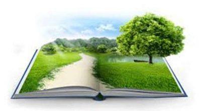 ارتباط بین کتاب و درخت