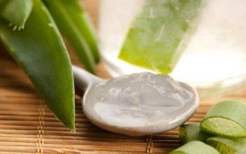 مواد مفید برای جوانی پوست