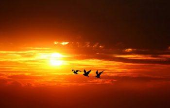 انشا طلوع خورشید