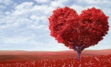حقایق علمی در رابطه با عشق