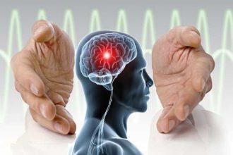 مقاله درباره مغز و زندگی