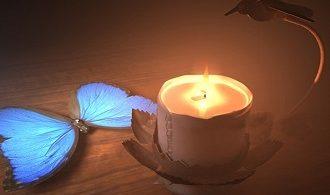 انشا پروانه ای هستید که در تاریکی شب شمعی روشن پیدا کرده اید