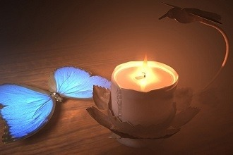 Photo of انشا پروانه ای هستید که در تاریکی شب شمعی روشن پیدا کرده اید