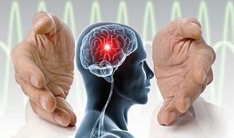 مقاله درمورد مغز و زندگی