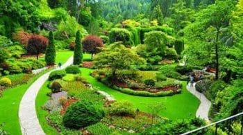انشا با موضوع باغ من در کنار خانه ام