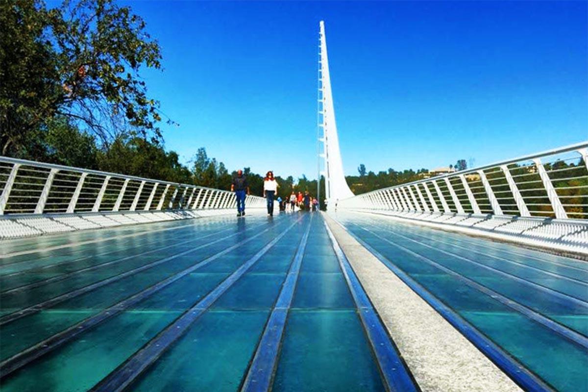 الهام از نبوغ طبیعت در معماری