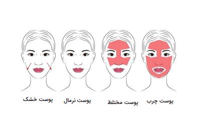 پوست چیست؟