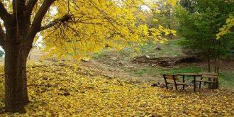 پارک ملی سرخه حصار؛ طبیعت زیبای تهران