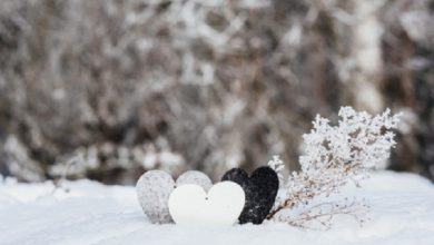 Photo of انشا درباره ی من برفم نگارش پایه دهم