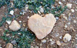 انشا درمورد مقایسه قلب و سنگ