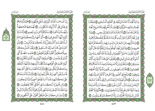 صفحه 443 قران (سوره یس) - استخاره با قران