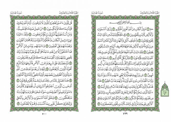 صفحه 499 قران (سوره جاثیه) - استخاره با قران